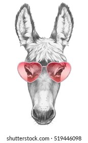 Donkey in Love! Portrait of Donkey with sunglasses. Hand drawn illustration.