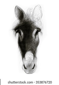 Donkey-drawing original. Ballpoint pen drawing.