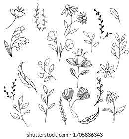 doodle style illustration. Set of simple elements of flowers and plants. stylized flowers, twigs of plants, leaves. Hand drawn simple icons. symbol of gardening, the arrival of spring, summer