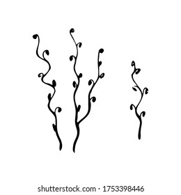 Doodle Twig - Illustration. Decorative wavy twigs of plants in doodle style. set of twisting twigs isolated on white background. spring plant in black