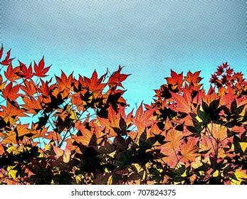 Dot Art Drawing; Red Momiji Maple Leaves at the World Heritage Forest Kumano Kodo, Wakayama Prefecture, Japan