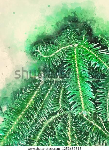 Douglas Fir Branches Watercolor Background Copy Stock Illustration