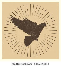 Dove silhouette in sun burst. Vintage pigeon and star burst logo design illustration