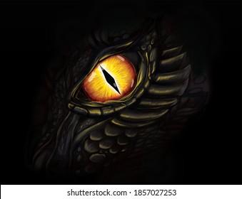 Dragon eye fantasy illustration. Digital art.