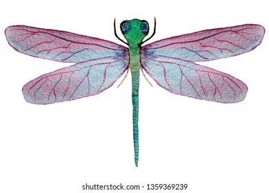 dragonfly with pink wings on a white background. watercolor illustration for decoration and design of cards, posters, games and books.