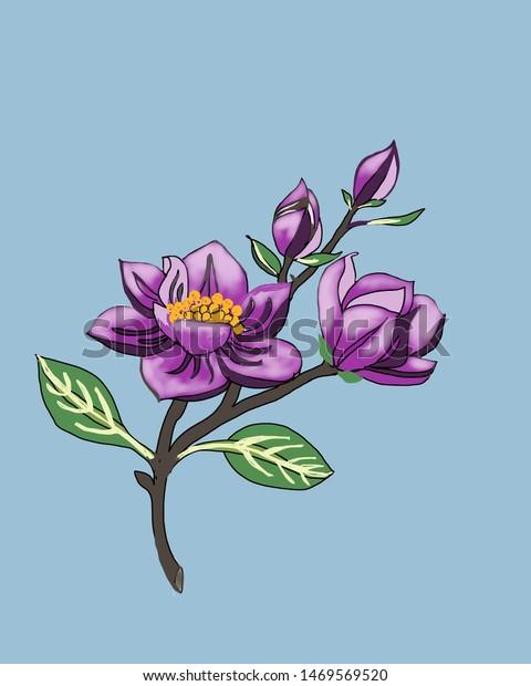Draw Bright Purple Flower Stock Illustration 1469569520