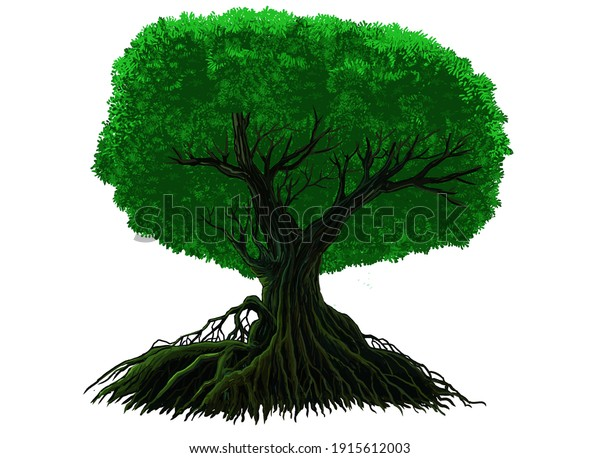 Drawing an amazing looking tree.