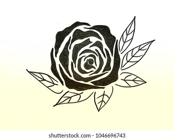 Contour Line Drawing Rose : Drawing beautiful rose bouquet flower leaves stock illustration