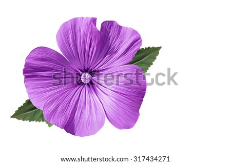 Drawing beautiful purple flower on white stock illustration drawing beautiful purple flower on a white background mightylinksfo
