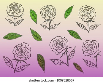 Contour Line Drawing Rose : Drawing beautiful rose flower blossom illustration stock