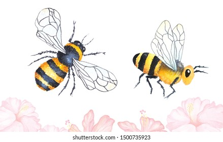Drawing bees with watercolor.Illustration flying insects for honey.Painting bumblebee on a white background.