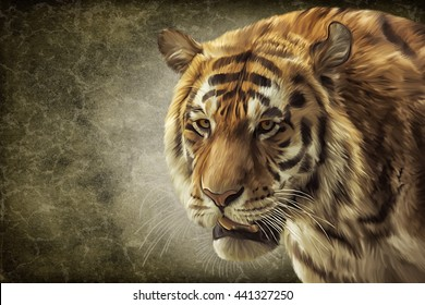 Drawing  bengal tiger portrait oil painting on old vintage color grunge paper background