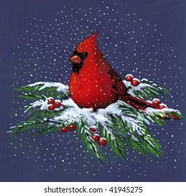 Drawing of Cardinal on Snowy Pine