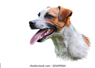 Drawing Dog Jack Russell Terrier, Hand-drawn, portrait oil painting on white background