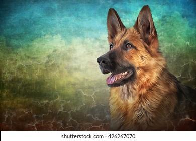Drawing German Shepherd Dog portrait on old vintage color grunge paper background