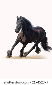 Drawing of a horse, portrait