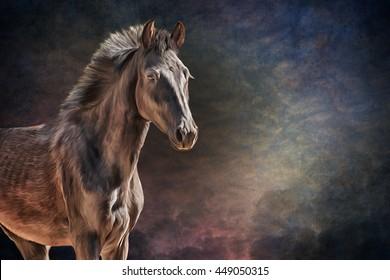 Drawing horse portrait oil painting on old vintage color grunge paper background