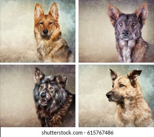 Drawing, illustration funny dogs, set portrait oil painting on old vintage color grunge paper background. Hand drawn home pet. Digital painting. Mixed breed dog