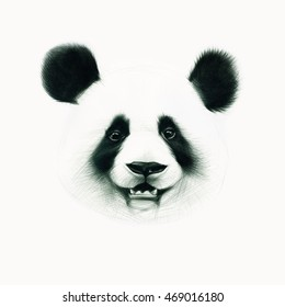 Drawing original of panda isolated on white background. Ballpoint pen drawing.