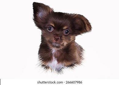Drawing puppy Chihuahua dog, Hand-drawn, oil painting on a white background