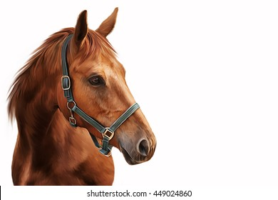 Drawing Red horse portrait on a white background