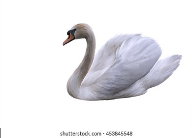 Drawing swan on a white background