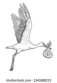 Drawing of white stork bird carrying baby in bag - hand sketch of flying ciconia ciconia, black and white illustration