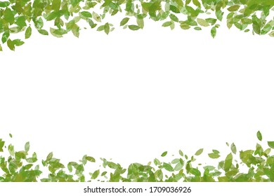 Drawn paint green leaf and grass. Border frame space isolated on white background.