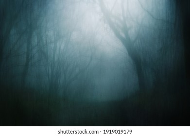A  dream like concept of a path through a spooky forest on a foggy winters day. With a grunge, abstract edit.