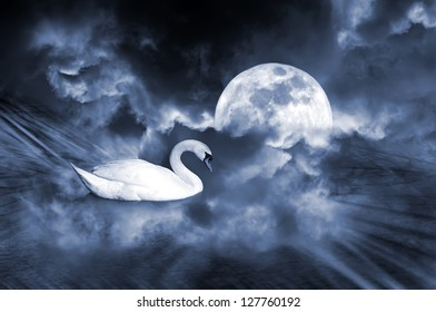 Dream sight of an white swan with full moon ambiance.Concept of dream love.