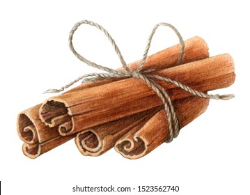 Dried cinnamon sticks  bunch tied with a rope watercolor illustration. Nature raw organic spice from a tree bark. Hand drawn cinnamon pile using in medicine, food and aromatherapy.