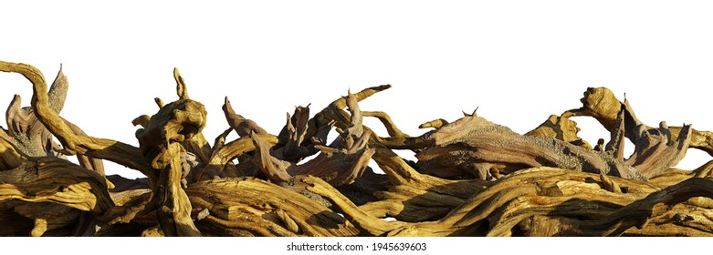 driftwood, pile of aged branches isolated on white background (3d render banner)