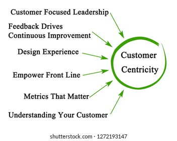 Drivers of Customer Centricity
