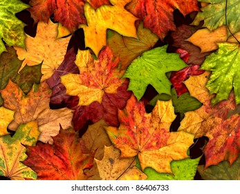 dry autumn leaves background