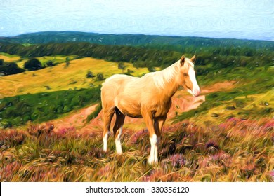 Dun cream colour pony with a white nose on an English hillside with purple heather