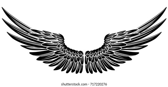 Eagle bird or angel wings pair spread out