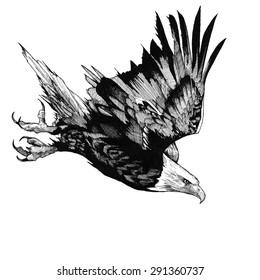 EAGLE BIRD INK HUNTER