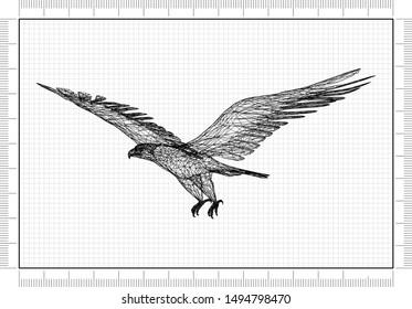 eagle Blueprint - 3D Rendering