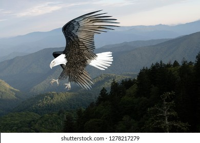 Eagle Over Mountainous Terrain - Digital Illustration