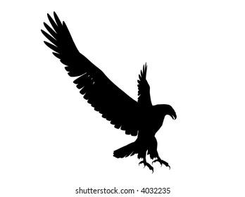 Eagle Silhouette