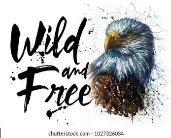 Eagle watercolor birds animals wildlife