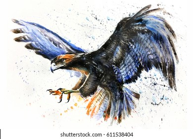 Eagle watercolor birds animals wildlife