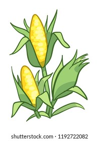 Ears of golden yellow corn icon