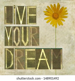 """Earthy background image and design element depicting the words """"Live your dream"""""""