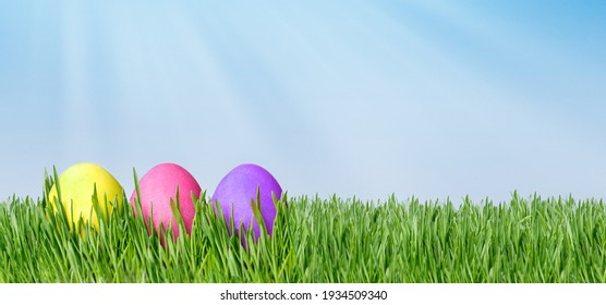 Easter background - colored eggs in grass on blue sky background