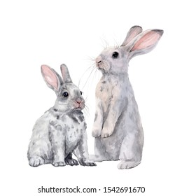 Easter bunnies . Children's watercolor illustration