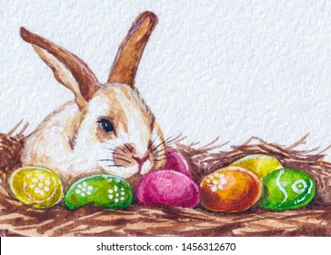 Easter bunny. Colored eggs on the nest.