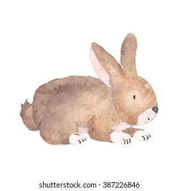 Easter Bunny Watercolor Illustration