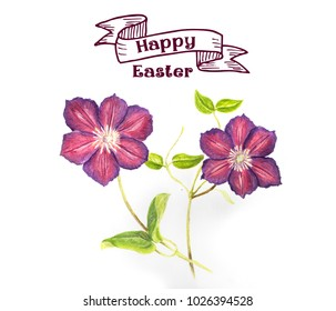 Easter illustration: Hand draw clematis