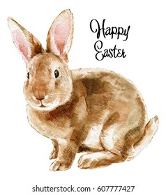 Easter rabbit. Hand drawn sketch and watercolor illustrations. Watercolor painting funny rabbit. Baby animal. Animal Illustration isolated on white background